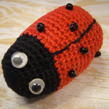 brooch ladybug
