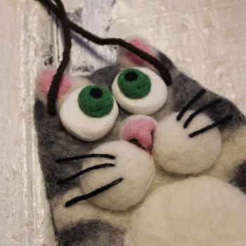 kass-kott